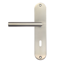 Modern Stainless Steel Interior Hollow Long Plate Door Lever Handle